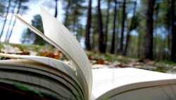 SummerReadingBook.jpg.560x0_q80_crop-smart